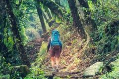 Stijging in de wildernis van Nepal Stock Fotografie