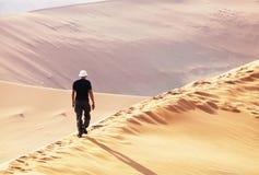 Stijging in de woestijn royalty-vrije stock afbeeldingen