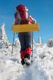 Stijging in een de winterberg Royalty-vrije Stock Foto