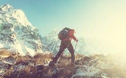 Stijging in Himalayagebergte Stock Afbeeldingen
