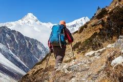 Stijging in Himalayagebergte Stock Foto's