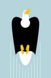 Stijging kale adelaars Vlucht van roofvogel Grote krachtige havik royalty-vrije illustratie