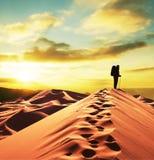 Stijging in woestijn Stock Fotografie