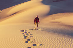 Stijging in woestijn Stock Afbeeldingen