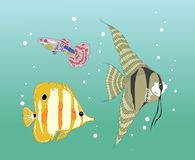 Stikers fishes Royalty Free Stock Photo