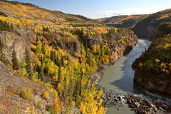 stikine реки каньона грандиозное Стоковое фото RF