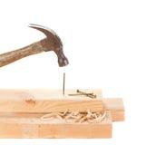 Stiking ein Nagel mit einem Hammer Lizenzfreies Stockbild