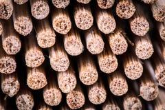 Stiks de bambú foto de archivo