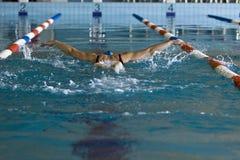 Stil de la mariposa de la natación de la mujer Fotografía de archivo libre de regalías