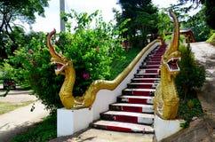 Stil eller Naka för drake thai på trappuppgången för ingång på Wat Tham Royaltyfria Bilder