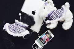 Stil för Apple iPhonehörlurar Arkivfoto