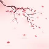 stil för fjäder för målning för blomningCherry orientalisk Arkivbild