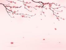 stil för fjäder för målning för blomningCherry orientalisk Royaltyfri Fotografi