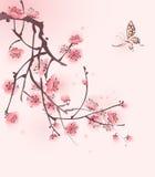 stil för fjäder för målning för blomningCherry orientalisk Arkivfoton