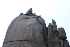 stil för sten för porslinhuangshan påfågel unik sh Fotografering för Bildbyråer