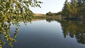 Stil meer, in de bladeren van de voorgrondberk, stille visserij, video stock video