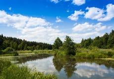 Stil meer in het bos in de zomer stock fotografie