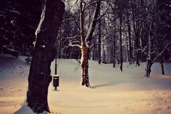 Stil park stock afbeeldingen