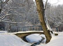 Stil park dat met sneeuw wordt behandeld Stock Foto