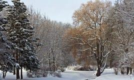 Stil park dat met sneeuw wordt behandeld Royalty-vrije Stock Foto