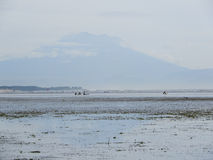 Stil strand met wolken Stock Foto
