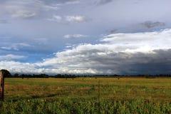 Stil Texas Pasture stock afbeeldingen