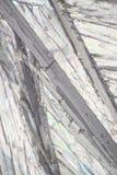 Stilbène sous le microscope Photo libre de droits