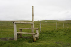 Free Stile Stock Photography - 20656102