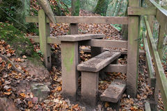 Stile. In woods in autumn Stock Images