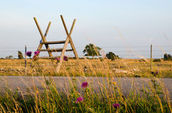 Stile at barb wire. Stile over barb wire with flowers in foreground Stock Images
