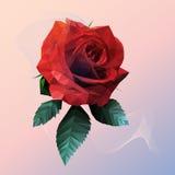 Stile basso della rosa rossa romantica poli su fondo blu rosa Fotografia Stock Libera da Diritti