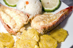 Stile centro americano dell'aragosta con il riso dei tostones Fotografia Stock