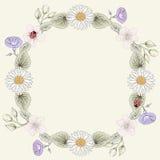 Stile d'annata dell'incisione della struttura floreale Fotografia Stock