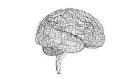 Stile del modello di concetto del cervello umano illustrazione di stock