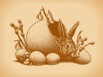 Stile dell'annata del coniglietto di pasqua Immagini Stock