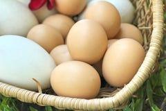 Stile dell'annata delle uova di Pasqua e delle uova bianche Fotografie Stock