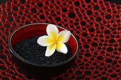 Stile dell'asiatico delle lenticchie Immagini Stock
