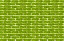 Stile della pietra per lastricati di struttura dell'erba verde Immagine Stock