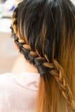 Stile di capelli marrone creativo della treccia lunga in salone Immagine Stock