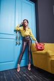 Stile di modo della raccolta del catalogo di trucco dell'abbigliamento delle donne Immagine Stock