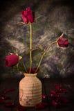 Stile di natura morta della rosa rossa fotografie stock libere da diritti