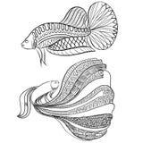 Stile di scarabocchio, pesce siamese di combattimento Fotografie Stock Libere da Diritti