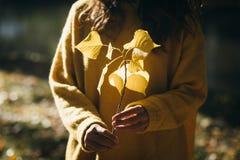 Stile di vita di autunno e concetto di modo fotografia stock libera da diritti