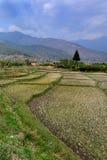 Stile di vita del Bhutan Immagine Stock Libera da Diritti