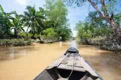 Stile di vita del fiume di delta del Mekong immagine stock libera da diritti