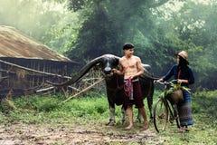 Stile di vita dell'agricoltore sulla campagna Fotografie Stock