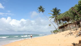 Stile di vita della spiaggia video d archivio