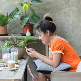 Stile di vita delle donne facendo uso di un telefono cellulare in caffè del caffè Fotografie Stock