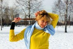 Stile di vita di inverno Fotografia Stock