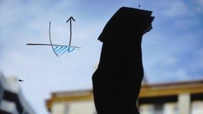 Stile di vita: grafici commerciali di bello della giovane donna per la matematica di pulizia dal vetro con cielo blu, grattacielo video d archivio